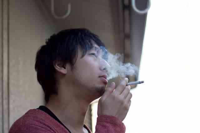 c812_tabakonokemurimokumoku_tp_v1